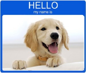 Choosing A Good Dog Name
